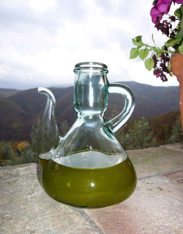 Georgia Grown Olive Oil