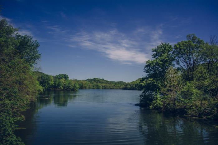 7) Radnor Lake