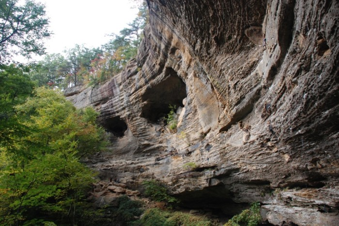 1. A true gem in Kentucky is the Red River Gorge State Park.
