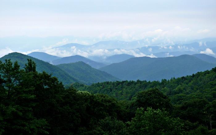 15) Roan Mountain