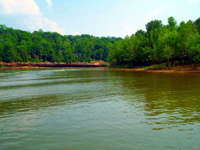 9. Rough River State Park offers cabins, camping, RV's, grilling, and chillin' in the sunshine.