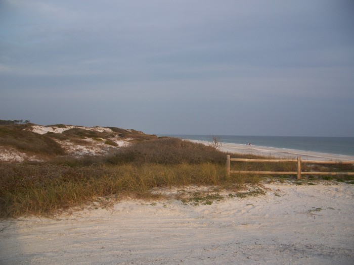 Grayton Beach Sp Fl Camping