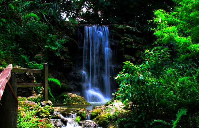 Most People Don't Know These 7 Waterfalls Are Hiding Right Here In Florida