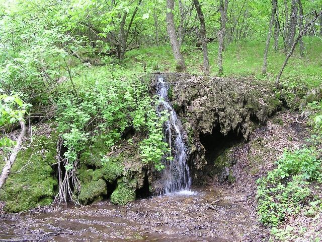 5. Sheyenne State Forest Mineral Waterfall - the only registered natural waterfall in North Dakota