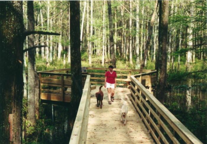 11) Wolf River Conservancy - Memphis