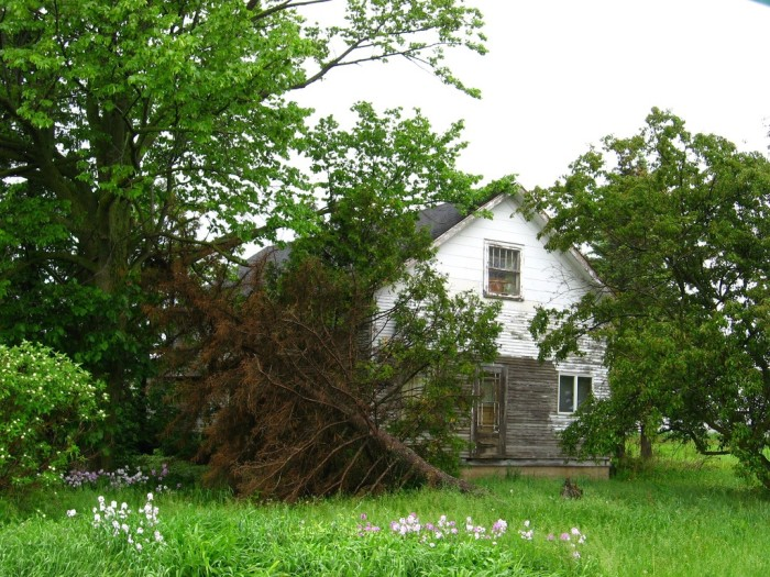 3. This abandoned house is in Langlade County, Wisconsin.