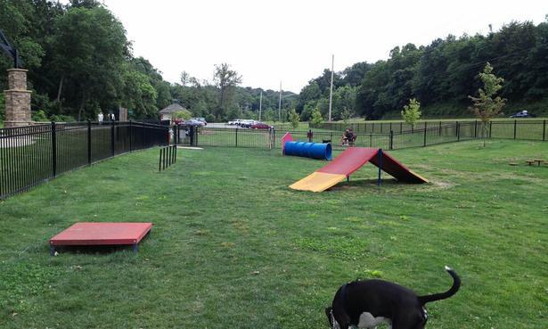 9. Bentonville Bark Park: This park is located at North Walton Boulevard at North Bentonville Trail in Bentonville, Arkansas.