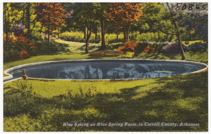 54. Blue Spring Farm: This spring and farmland were located in Carroll County, Arkansas.
