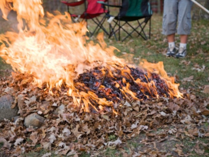 8) Smelled the aroma of burning leaves when you walk outside your house.