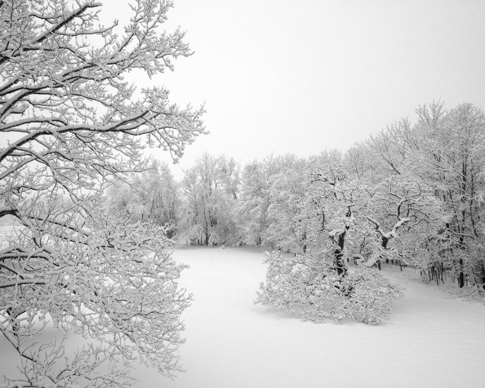16) This snowy picture was captured at the Claymont Mansion in Charles Town, West Virginia.