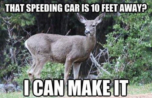 2) That speeding car is 10 feet away? I can make it.