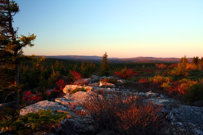 6) The sunrise pictured here was taken in Dolly Sods, which is a part of the Monongahela National Forest.