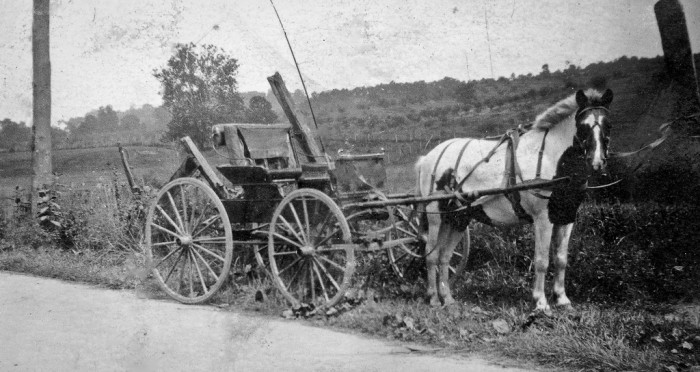 7) A horse and buggy, taken somewhere in Glenwood, West Virginia.