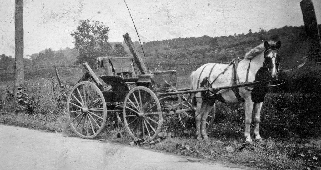 12 Vintage Photos Of West Virginia