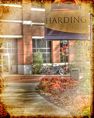 7. Honors Symposium at Harding Summer Academic Institute: The dates from this camp run from June 26 to August 31. The age group is for rising high school seniors and the cost is $795.