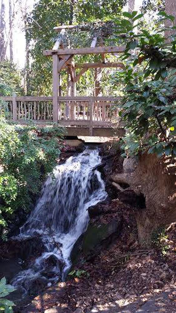 15. Hatcher Garden & Woodland Preserve, Spartanburg, SC