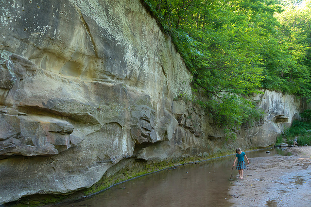 3. Ledges State Park: Located near Boone, Ledges is a favorite spot for hikers and nature enthusiasts. The park has a 5.4 mile trail, cliff areas, and many beautiful wildflowers.
