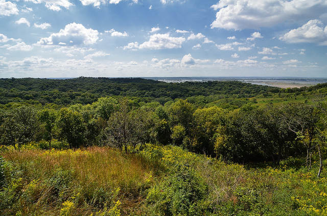 4. Loess Hills State Forest: Loess Hills is located in west-central Iowa in Harrison and Monona Counties. The park spans a sprawling 11,266 acres, and is a prime spot for hiking, fishing, picknicking, or site-seeing,