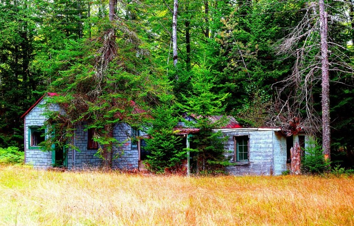 7. An abandoned cabin is up in Malvern.