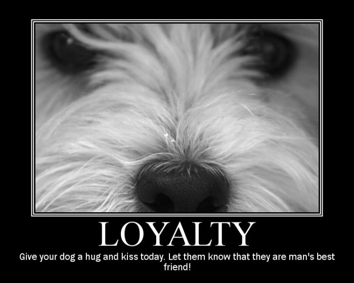 Loyal. I hear they have the highest per capita in the state of adulterers and embezzlers.