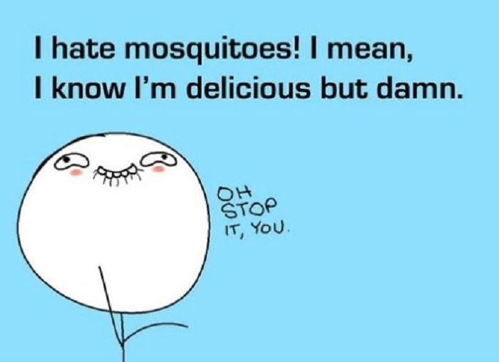 15. If mosquitoes only knew how much we despise them!