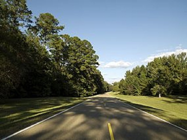 9. Take a scenic drive along the Natchez Trace Parkway.