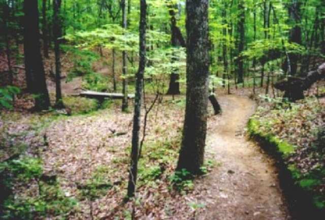 2. Oak Mountain Red Trail - Pelham