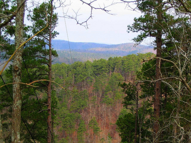 5. Daisy State Park: Seated among the scenic foothills of the Ouachita Mountain, Lake Greeson, the Little Missouri River, this park makes a winning combination for hikers and day trippers.