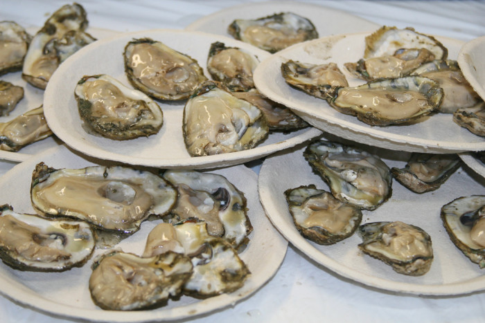 4. Oysters…roasted, baked or raw.