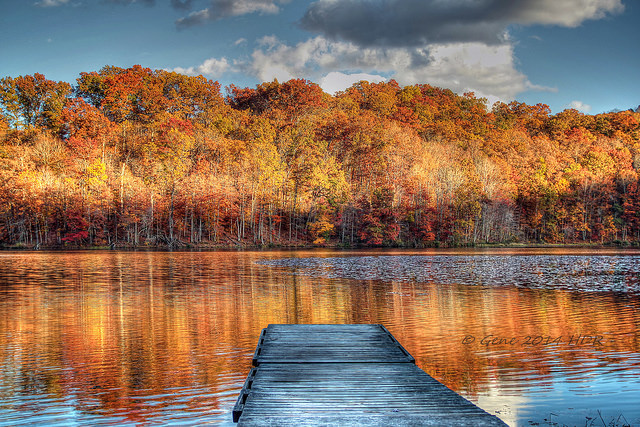 9) Isn't the reflection of the trees on Plum Orchard Lake just gorgeous?