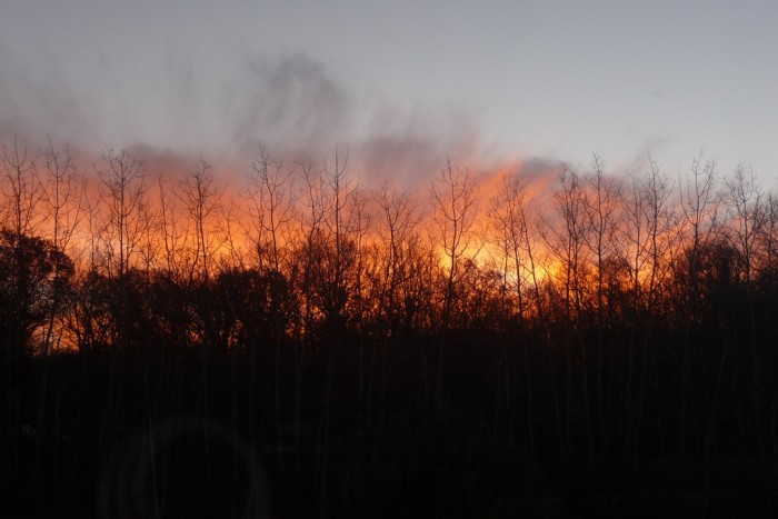 7. I really like this shot of the sunrise emerging behind the barren trees in Amery.