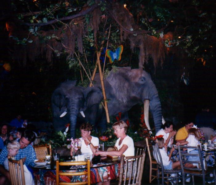 restaurant 10 rainforest inside