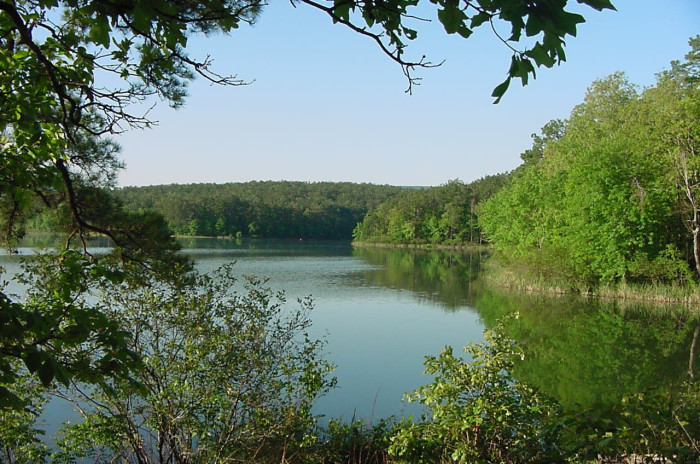 4. River Bluff Float Camp: This picturesque swimming spot is a part of the Ouachita River.