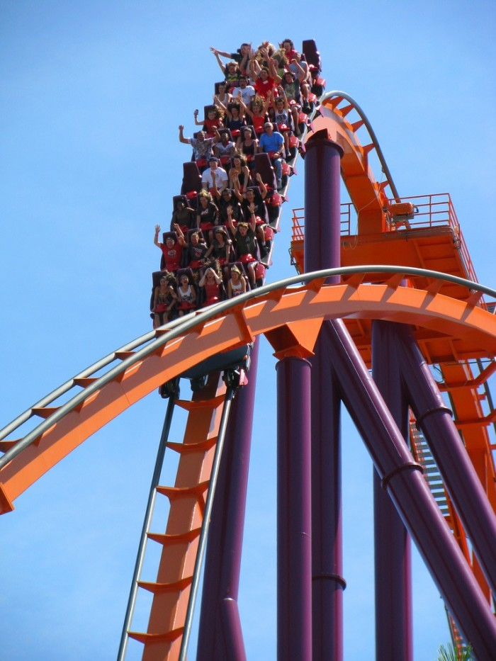 4. Driven to Illinois for the day to go to Six Flags.