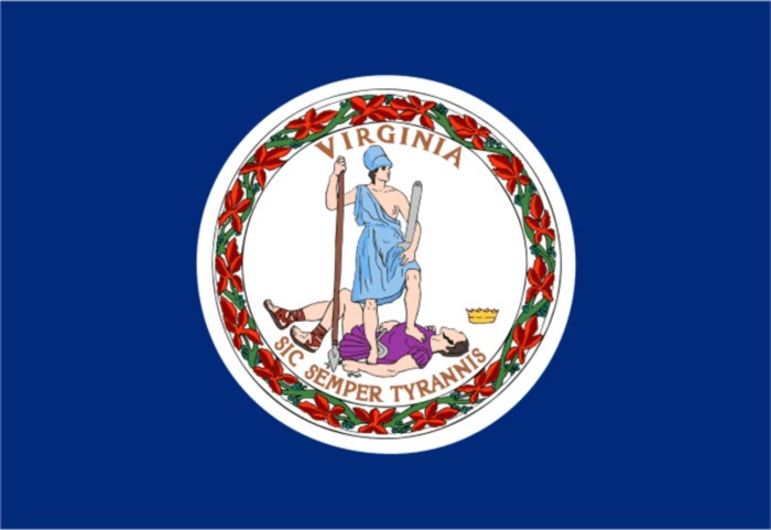 22. Had to explain what exactly is going on in our state flag.
