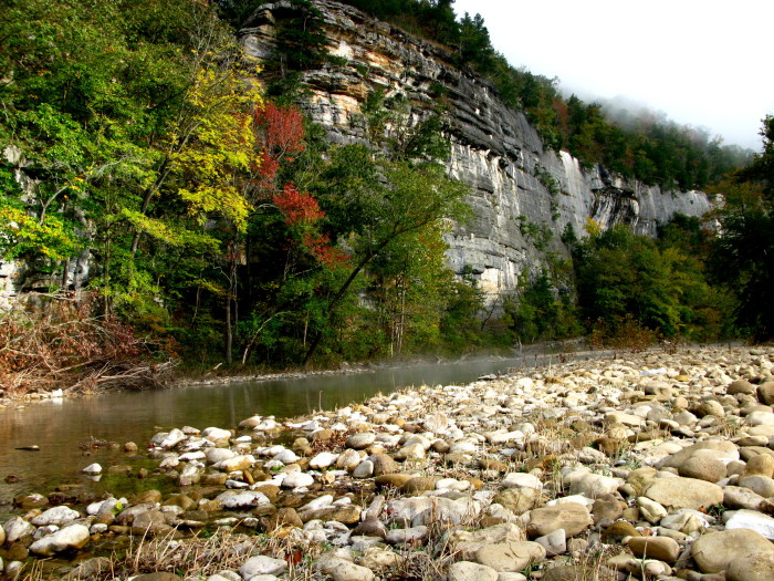 2. Steel Creek campground: This popular spot is home to scenic Roark Bluff and serves as access points for the Buffalo River Trail and the Old River Trail.