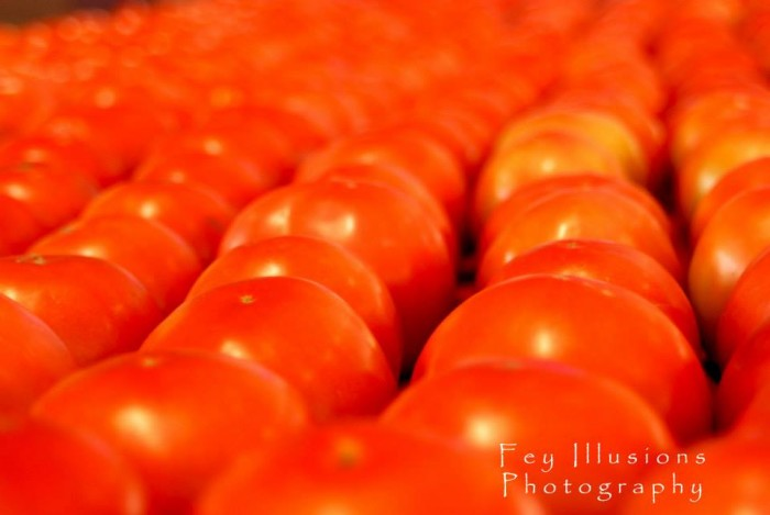 14. Tomatoes - When summer hits so does the tomatoes and John's Island is a big supplier for South Carolina. We eat them in pies, over rice, and fresh sliced. There is nothing better than a fresh tomato sandwich and nothing compares to local farmed tomatoes!