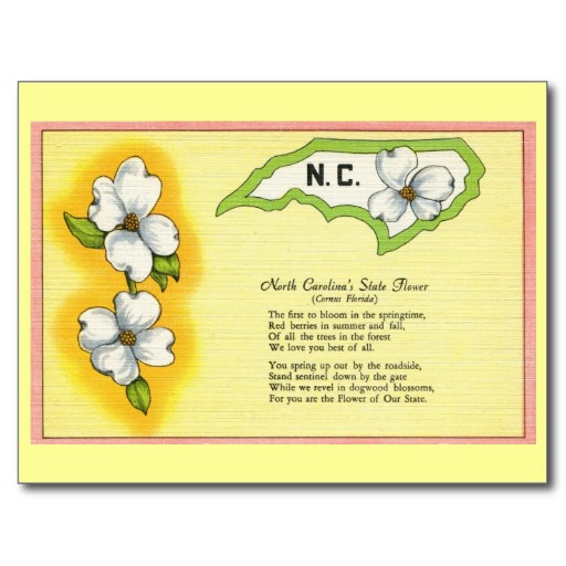 6. Beautiful postcard about our state flower with a cute poem to go along!