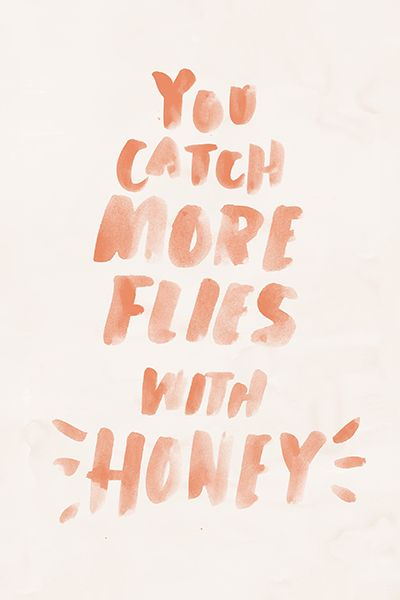 You Attract More Flies With Honey Than Vinegar