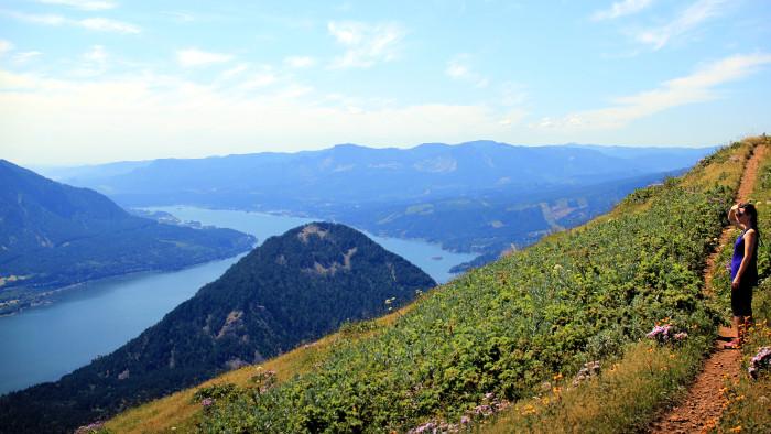 13. Dog Mountain