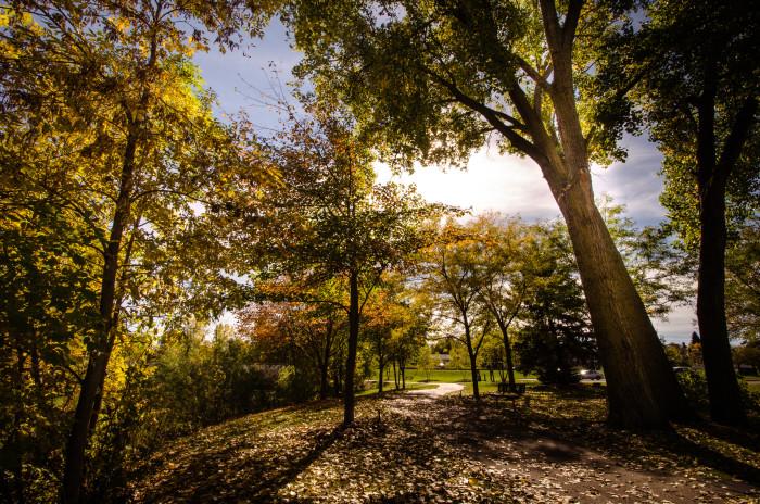 13. Minnesota Landscape Arboretum & Maple Grove Arboretum.