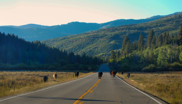 8) Mirror Lake Scenic Byway