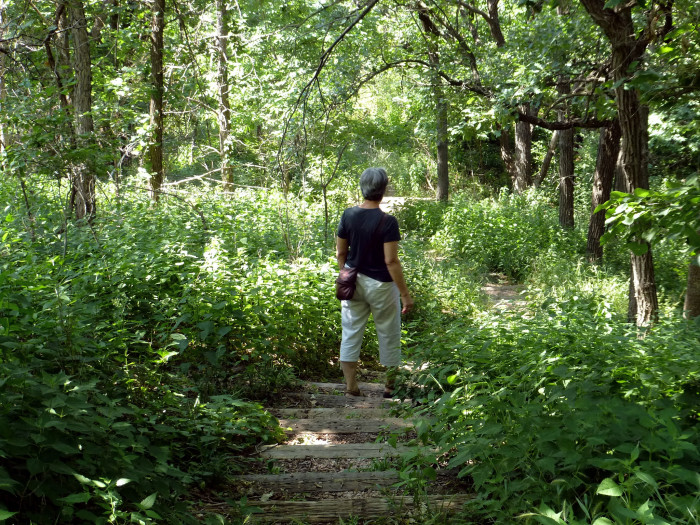 10. Stone State Park in Sioux City.