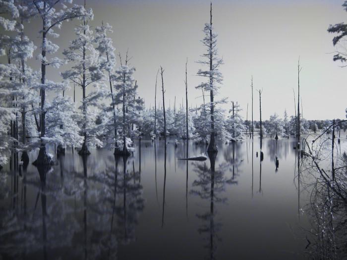 "11. ""Bluff Lake in Infrared"""