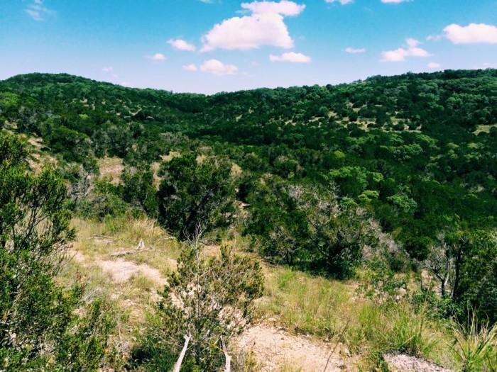 9) Wild Basin Wilderness Preserve (Austin)