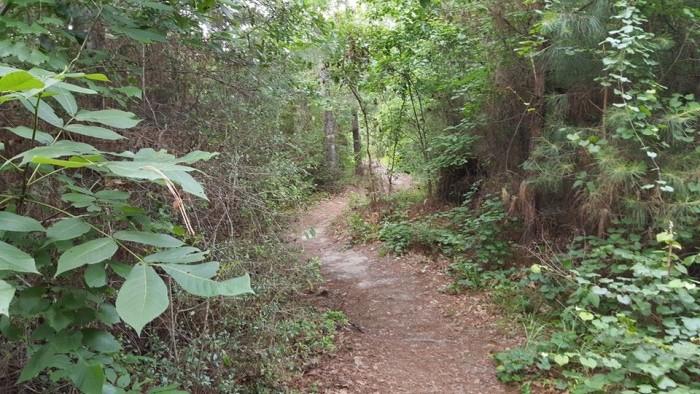 6) Claiborne West Park (Vidor)