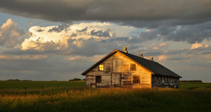 11. This old hog house in Albert City watches as the sun begins to set