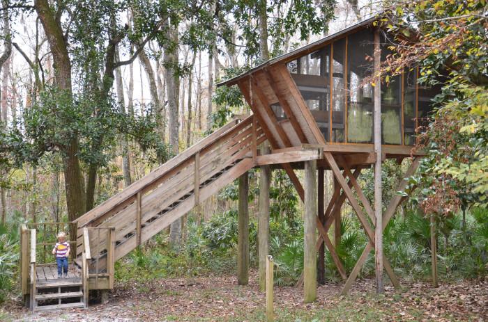 Camp Chowenwaw Treehouse