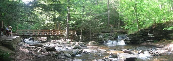 1. Ricketts Glen State Park,  Sullivan County