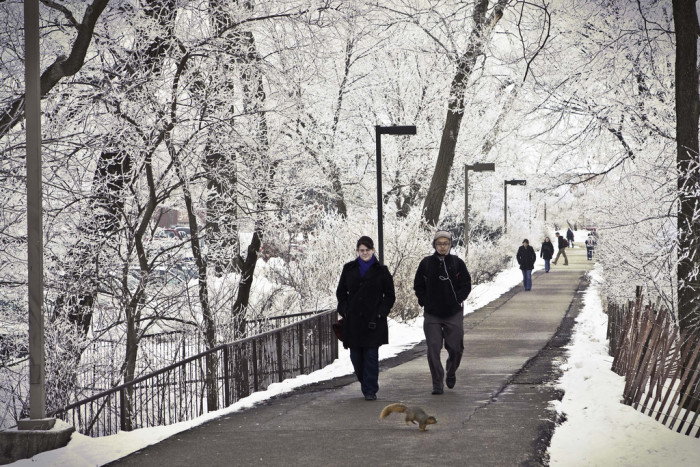 11. Ames is one of the 10 best places to live in the country